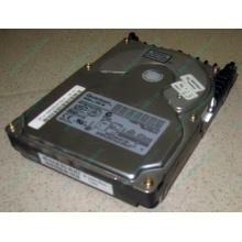 Жесткий диск 18.4Gb Quantum Atlas 10K III U160 SCSI (Королев)