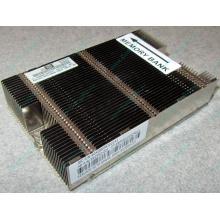 Радиатор HP 592550-001 603888-001 для DL165 G7 (Королев)